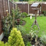 Trish's Garden
